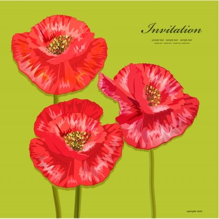 poppy flower: Bouquet of red poppies for your design Illustration