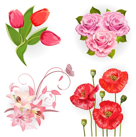 lily flowers set: Set of isolated flowers for your design Illustration