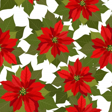 poinsettia: flower Christmas texture seamless