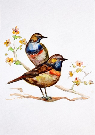 wet paint: watercolor drawing birds Stock Photo