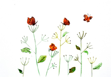 wild botany: watercolor drawing of a flower with a butterfly