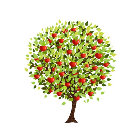 Isolated apple tree for your design Illustration