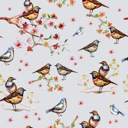 pajaro dibujo: Naturaleza sin fisuras textura de acuarela Foto de archivo