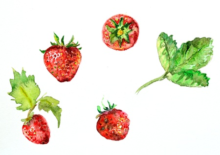 strawberries: watercolor painting of strawberries Stock Photo