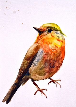 a small painting: watercolor drawing of cute bird