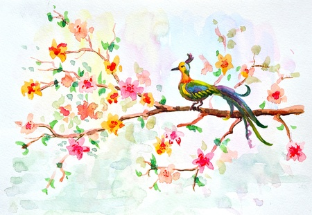 watercolor drawing of cute bird photo