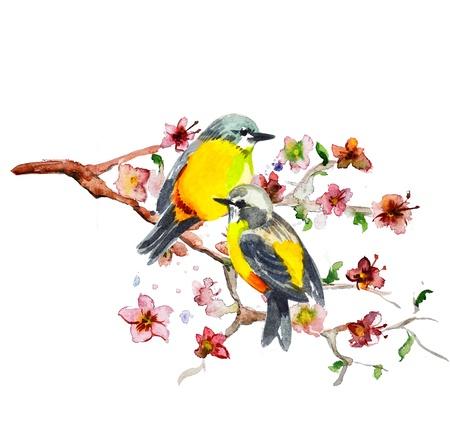 �rboles con pajaros: dibujo de la acuarela del p�jaro lindo