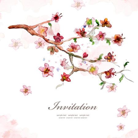 cerezos en flor: Tarjeta de la acuarela Flor