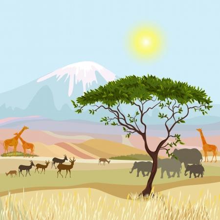 idealistic: African Mountain idealistic landscape