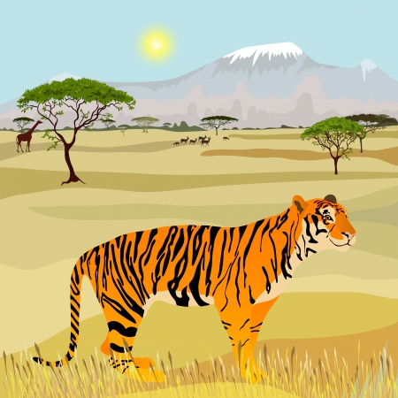 savanna: African Mountain idealistic landscape with tiger