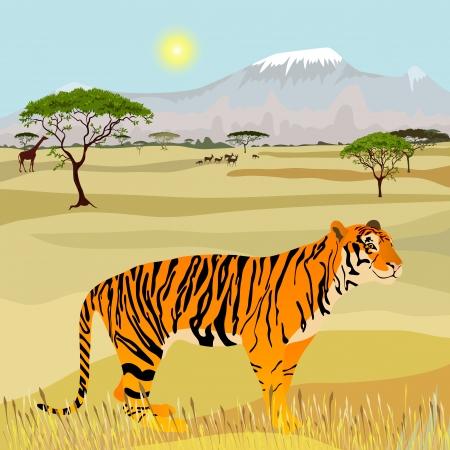 Afrikaanse Mountain idealistische landschap met tijger