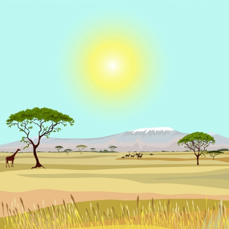 grasslands: African Mountain idealistic landscape