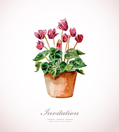 houseplant: home flowers in a vase. watercolor Illustration