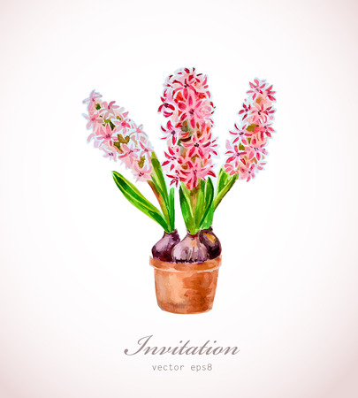 modern garden: home flowers in a vase. watercolor Illustration