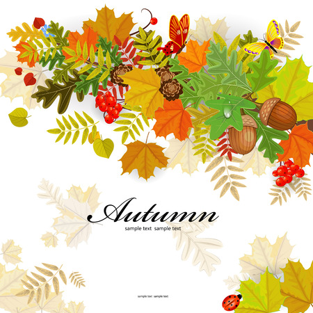 rowan: Autumn leaf pattern for your design Illustration