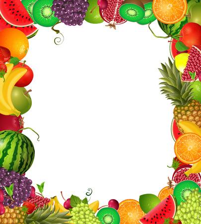 frame template of fruit for you design  向量圖像