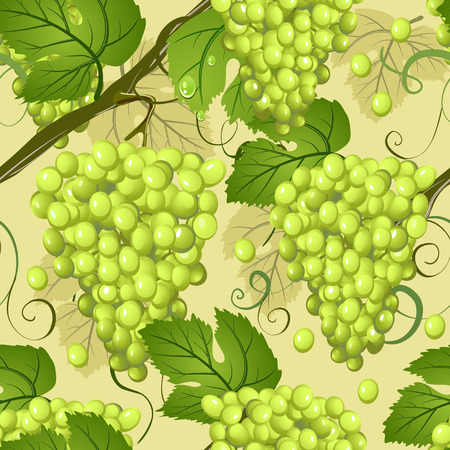 seamless texture of grapes Vector