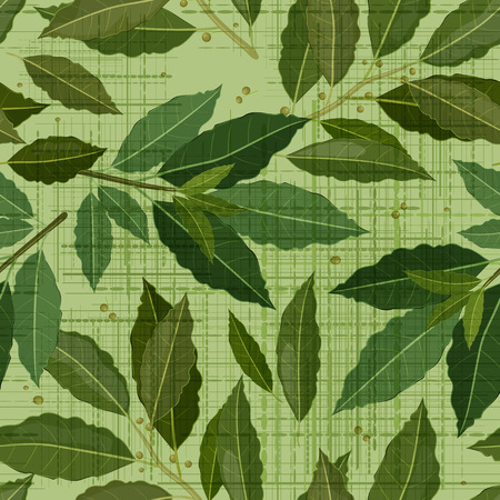 canva: seamless texture of bay leaf