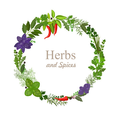 wreath of herbs and spices on a white background Ilustracja
