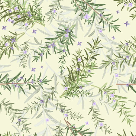 herbs of provence: seamless texture of rosemary