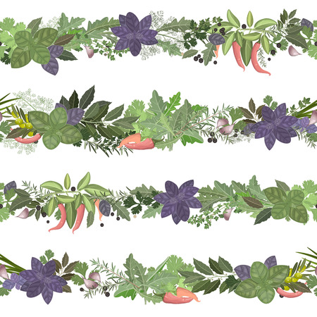 thyme: seamless border of collection herbs and spices Illustration