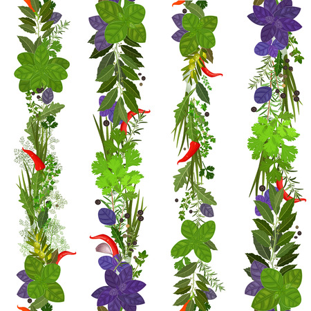 allspice: seamless border of collection herbs and spices Illustration