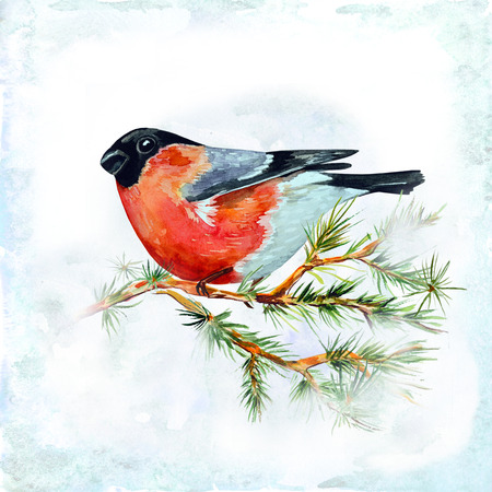 watercolor card with a bird photo