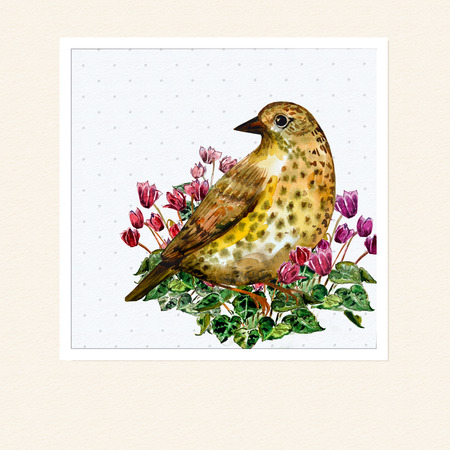 cyclamen: watercolor card with a bird