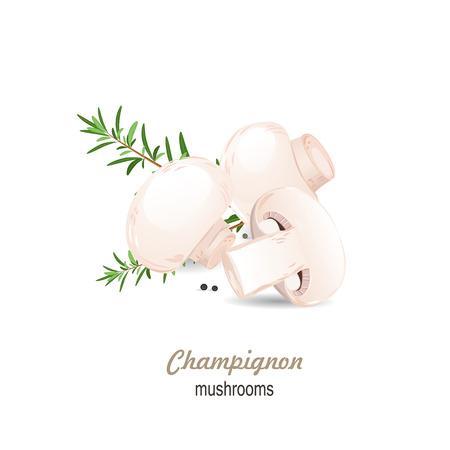 champignon: mushrooms champignon with herbs for your design