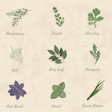chive: collection of herbs