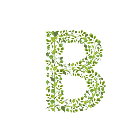 Spring green leaves. eco letter B Vector