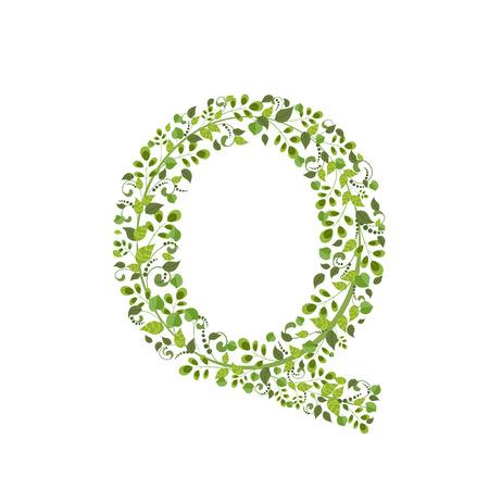 Spring green leaves. eco letter Q Vector