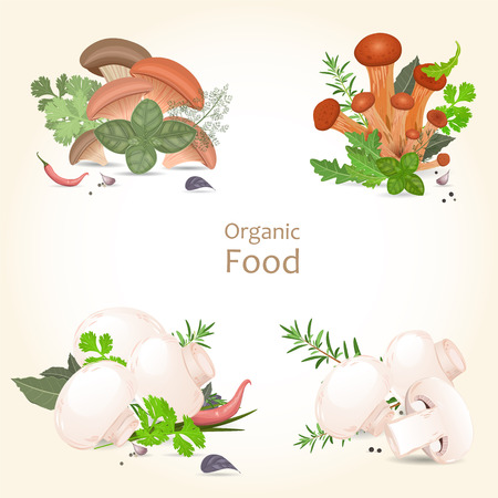 Collection of isolated edible mushrooms with herbs for your design Vector