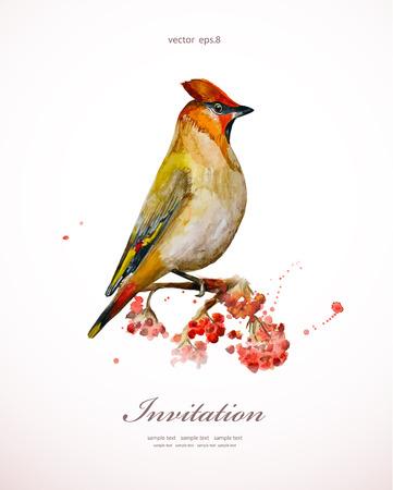 watercolor painting wild bird at nature illustration. invitation card