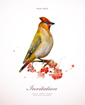 watercolor painting wild bird at nature illustration. invitation card