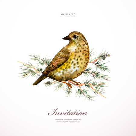watercolor painting wild bird on branch pine.  illustration. template for your design Ilustração