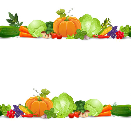 isolated seamless border with vegetables and herbs on white background