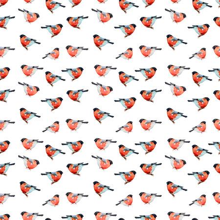 robin bird: nature with bird seamless texture watercolor Stock Photo