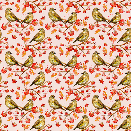 vintage seamless texture with cute birds watercolor photo