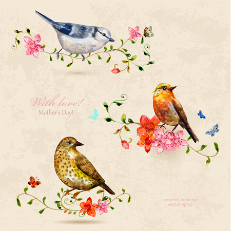 collection of cute birds. watercolor painting Ilustração