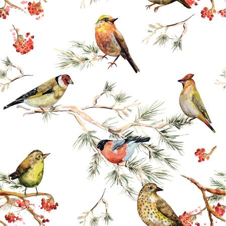 oiseau dessin: seamless texture des oiseaux forestiers. peinture à l'aquarelle Illustration