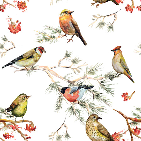 pine decoration: seamless texture of forest birds. watercolor painting