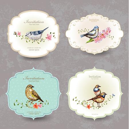 vintage: 集復古標籤可愛的鳥。水彩畫