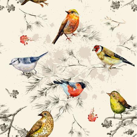 pajaro dibujo: Textura inconsútil de la vendimia de pajaritos. Pintura de la acuarela
