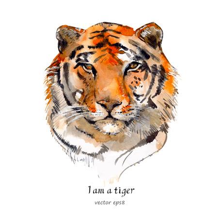 portrait of a tiger. watercolor