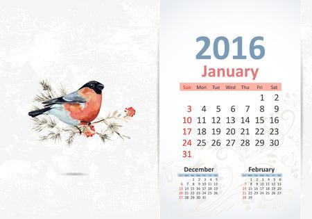 january calendar: Calendar for 2016, january Illustration