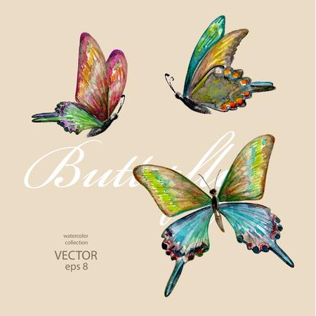 schmetterlinge blau wasserfarbe: Sammlung von fliegenden Schmetterlingen. Aquarellmalerei Illustration