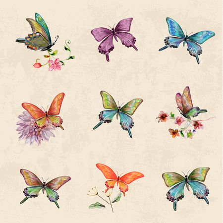 vintage a collection of butterflies. watercolor painting Ilustração