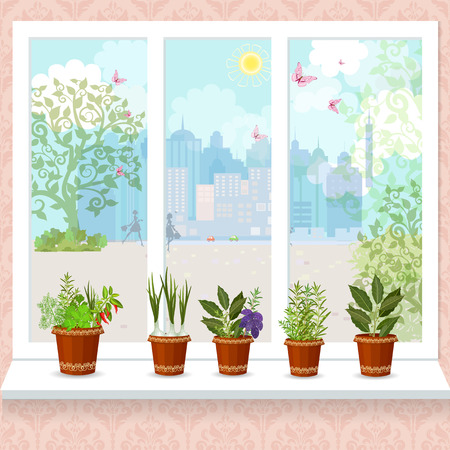 windowsill: herbs in flower pots growing on a windowsill. the sunny city with butterflies from window
