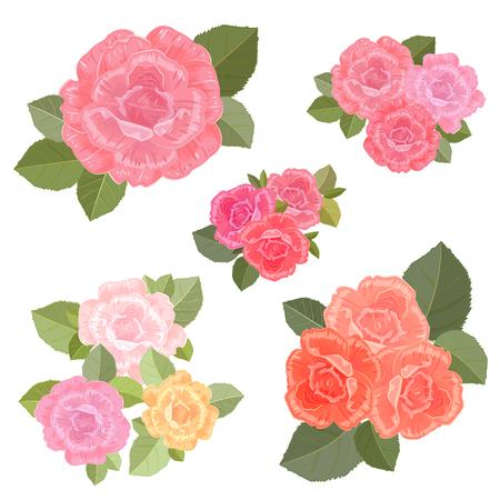 Sammlung Jahrgang Blumensträuße von Rosen für Ihr Design. Vektorgrafik